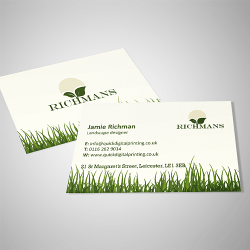 Business cards standard business cards reheart Images
